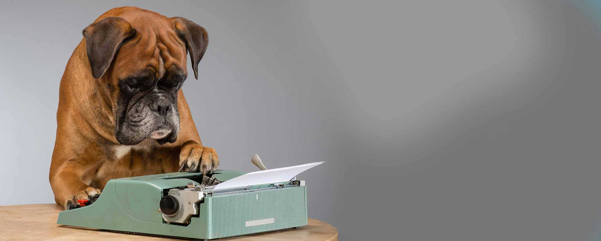 Dog with Typing Machine